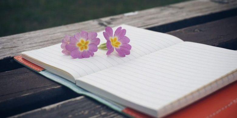 Алена Яковлеван блогшо